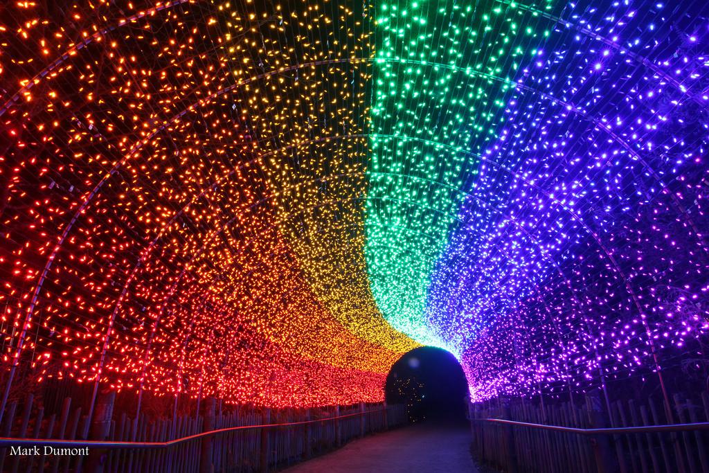 PNC Christmas Lights Cincinnati Ohio